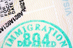 Immigration to South Africa - Services
